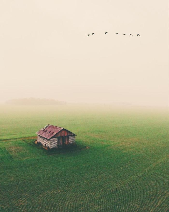 Vivir en medio de la nada. La más absoluta (y silenciosa)nada…