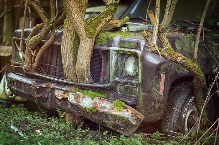 Abandonado pero espléndido. Así es #decay_nation…