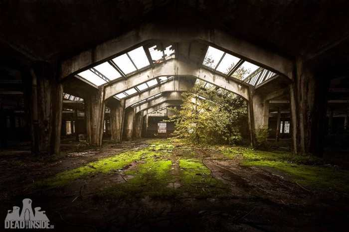 Vuelve el #Urbex. Vuelve la misteriosa magia de los lugares abandonados…
